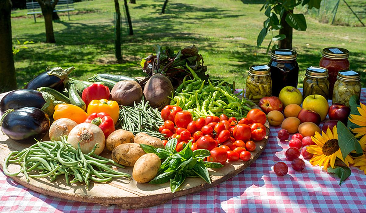 Le verdure del nostro orto